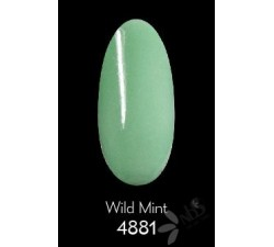 ReVi Puder Wild Mint 30 ml